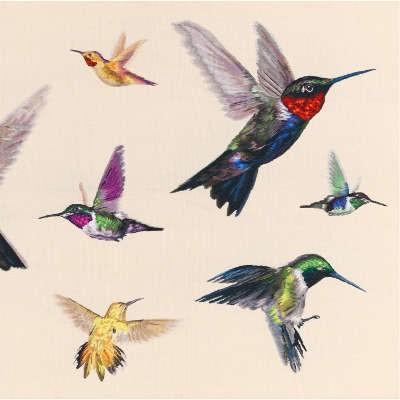 The Rug Company Hummingbird